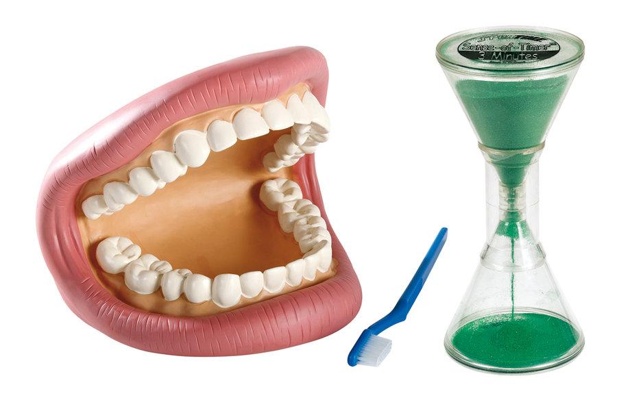 Exceptionnel le brossage des dents : 1 machoire articulée, 1 brosse à dents, 1  WD71