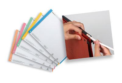 planches etiquettes pour dossier suspendu n 0 bristol assortis lot de 10. Black Bedroom Furniture Sets. Home Design Ideas